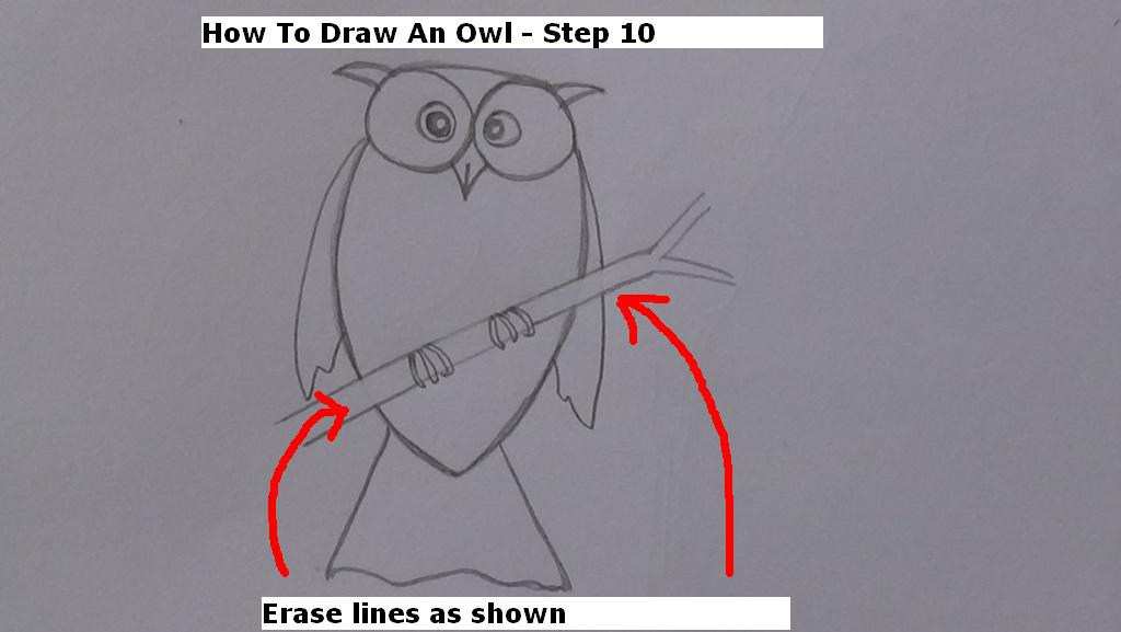 How to Draw An Owl Step 10
