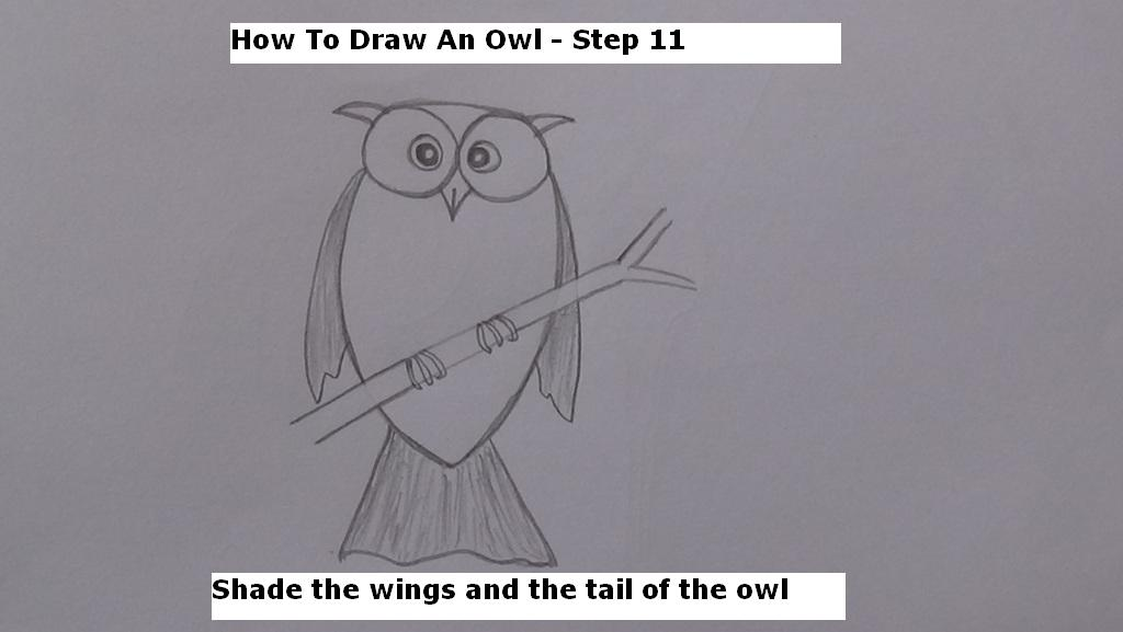 How to Draw An Owl Step 11