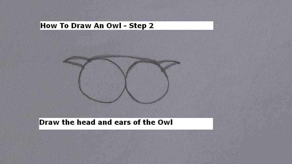 How to Draw An Owl Step 2