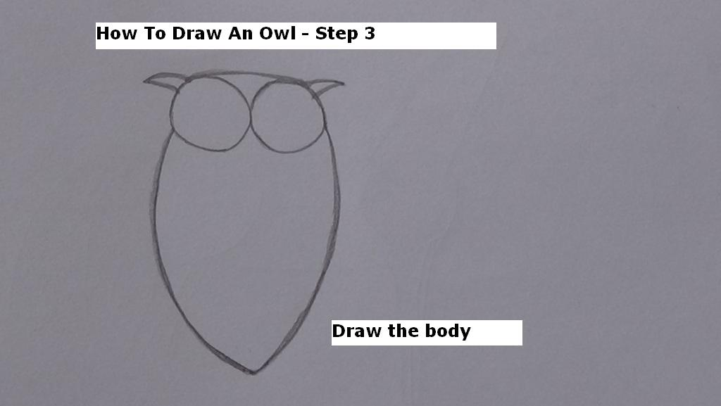 How to Draw An Owl Step 3