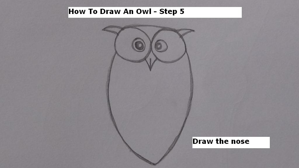 How to Draw An Owl Step 5