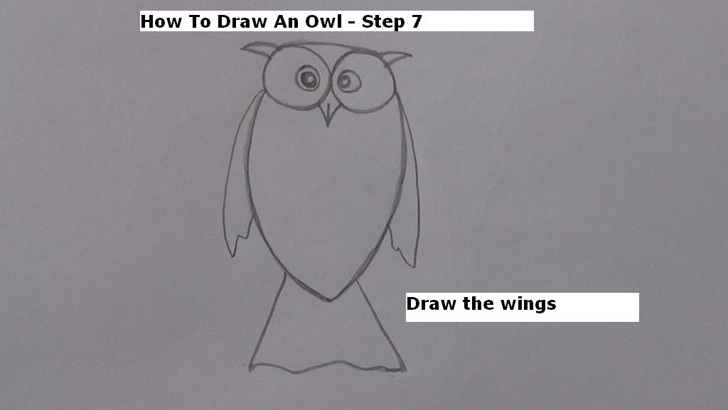 How to Draw An Owl Step 7