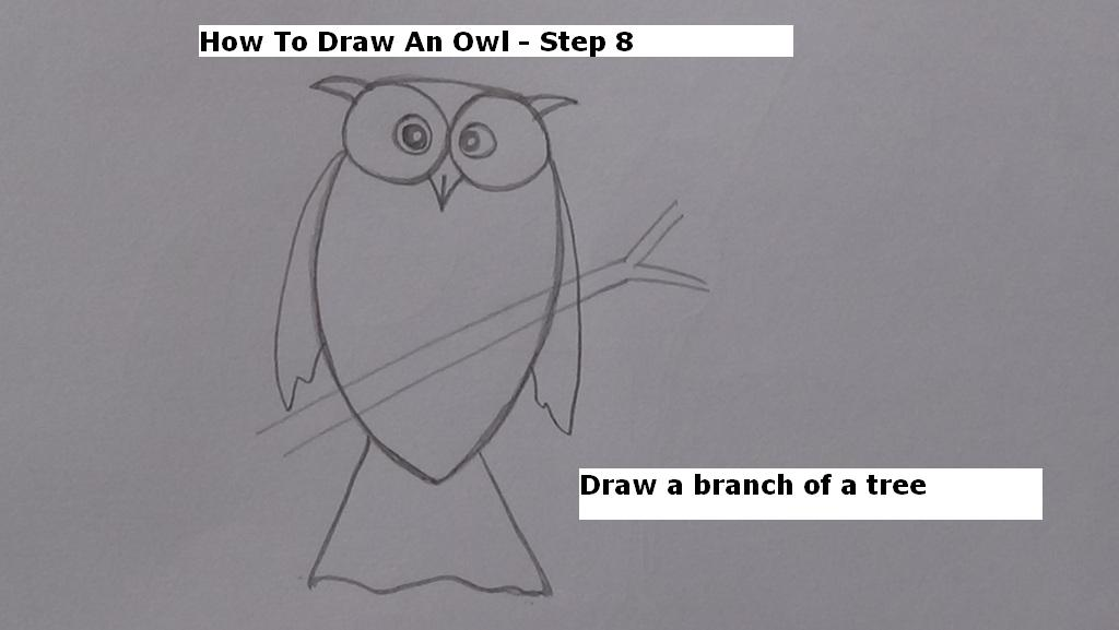 How to Draw An Owl Step 8