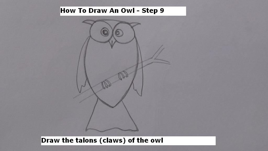 How to Draw An Owl Step 9